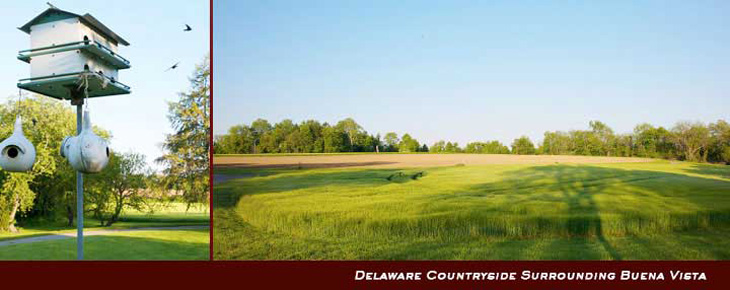 Delaware Countryside Surrounding Buena Vista